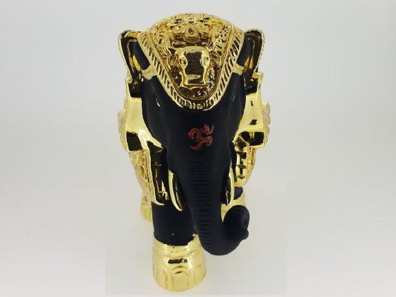 GOLDEN BLACK GAJRAJ